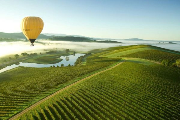Why Yarra Valley is a Popular Tourist Spot?