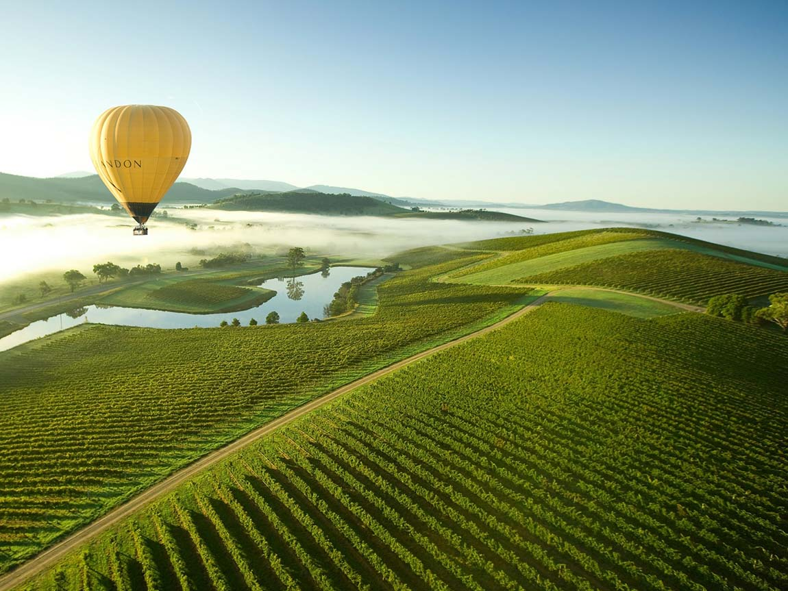 Why Yarra Valley is the Perfect Tourist Spot